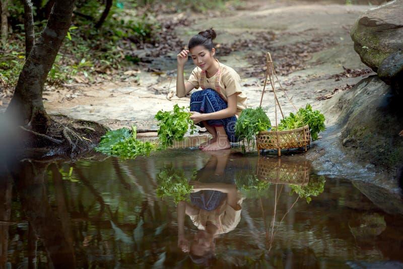 Den laotiska kvinnan Vientiane, Laos, gör ren flodstrandgrönsaker arkivfoton