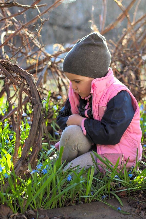 den ledsna, kränkta, klädda flickan i ett lock sitter varmt på hennes knä bland blommorna av blåa snödroppar i vingården arkivfoto