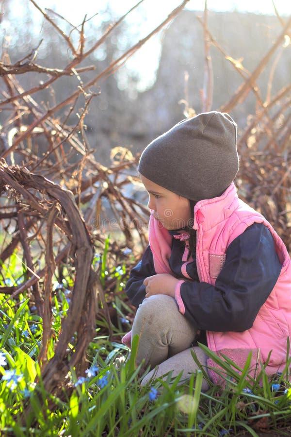 den ledsna, kränkta, klädda flickan i ett lock sitter varmt på hennes knä bland blommorna av blåa snödroppar i vingården arkivbild