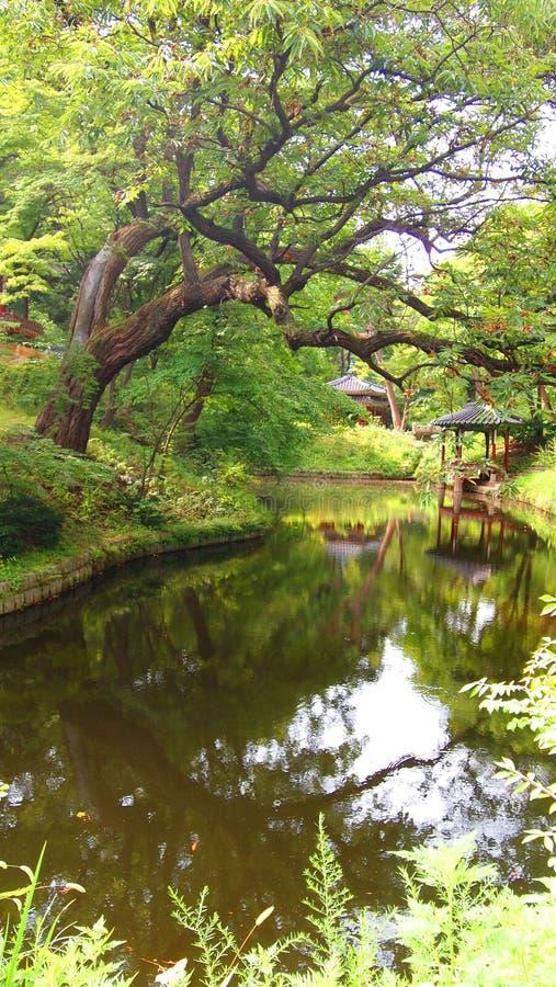 Den legendariska hemliga trädgården bak Royal Palace royaltyfri fotografi