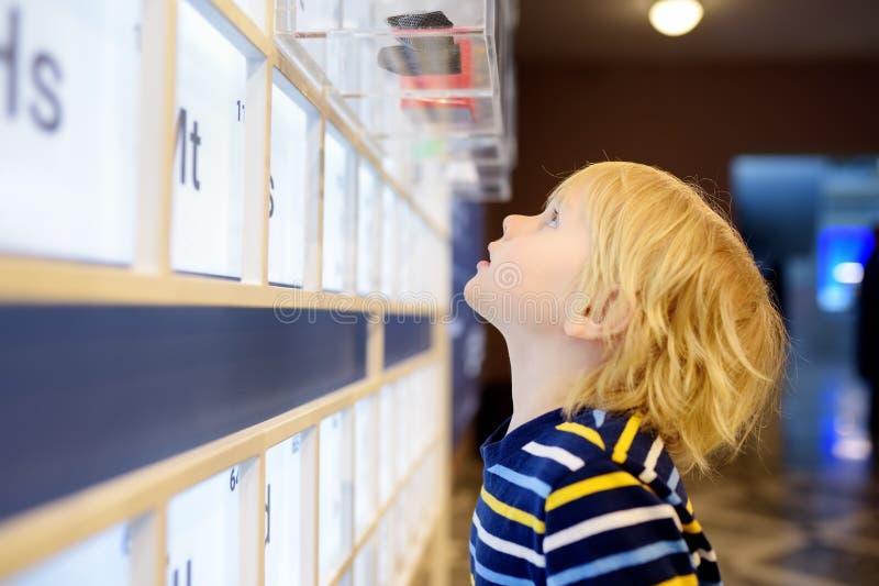 Den lilla сaucasian pojken ser en utläggning i ett vetenskapligt museum periodisk tabell f?r chemical element arkivbilder