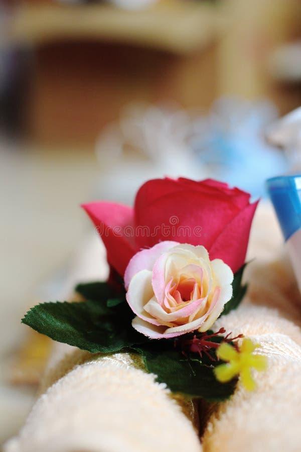 Den lilla blomman för oskarp persika arkivbild