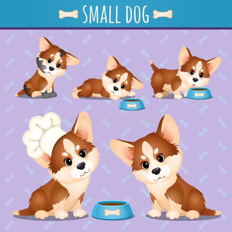 Den lilla bruna hunden med mat i olikt poserar stock illustrationer