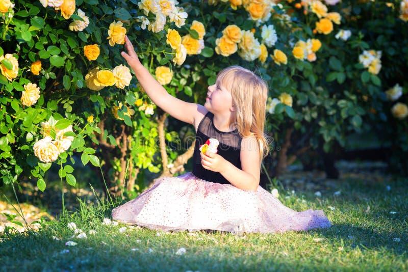 Den lilla Caucasian flickan sitter på grönt gräs i en rosa trädgård bredvid busken för gula rosor Trycker på en ros och ser den o arkivbild
