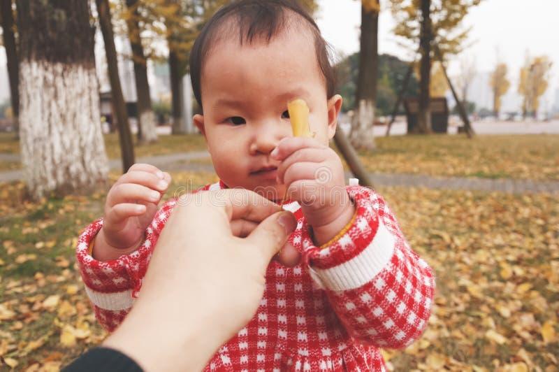 Den lilla dottern tar det guld- bladet av faderhanden på hösten arkivbilder