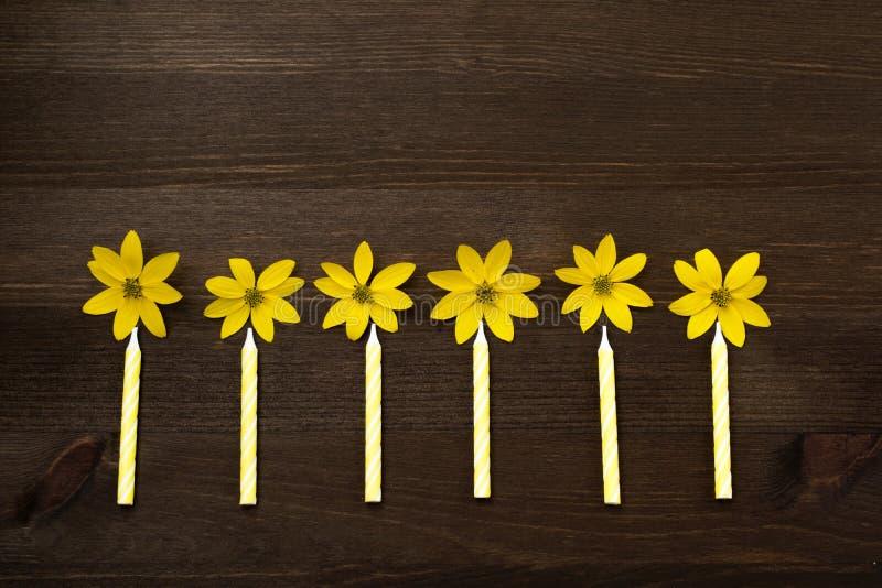 Den lilla färgrika födelsedagen undersöker litet, coSmall, guling, ordnade födelsedagstearinljus med guling blommar i rad som fla royaltyfria bilder