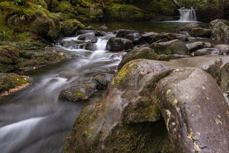 Den lilla floden som flödar över, vaggar på Glenarriff trän reserven, Irland, delen av cirkeln av Kerry, lång exponering för att  arkivfoto