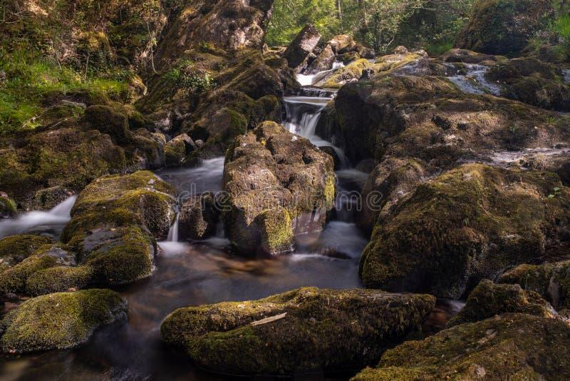 Den lilla floden som flödar över, vaggar på Glenarriff trän reserven, Irland, delen av cirkeln av Kerry, lång exponering för att  royaltyfria bilder