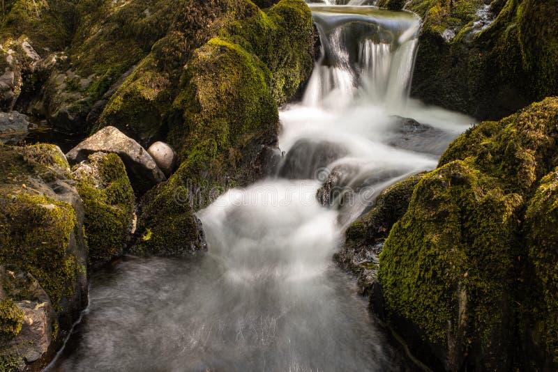 Den lilla floden som flödar över, vaggar på Glenarriff trän reserven, Irland, delen av cirkeln av Kerry, lång exponering för att  arkivbilder