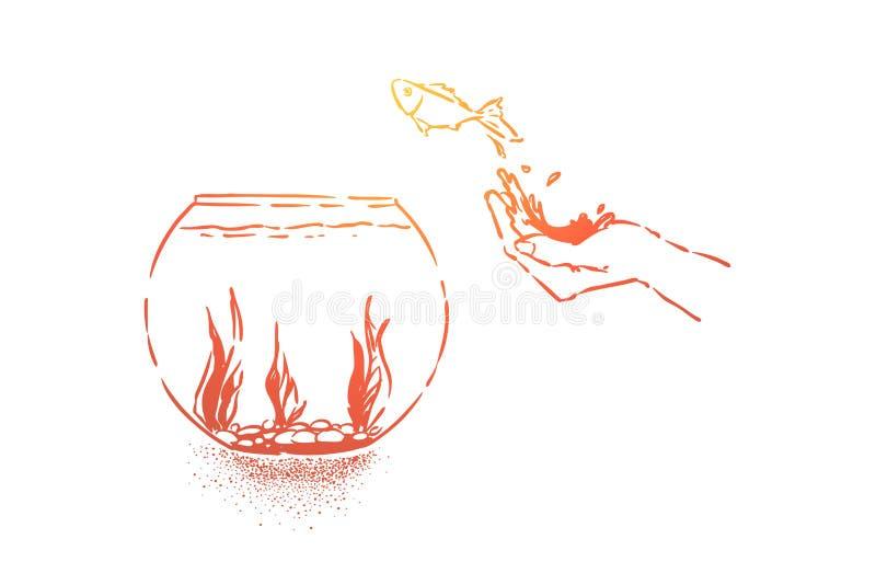 Den lilla guldfisken som hoppar i fishbowl, hand lät fisken gå, det inhemska husdjuret hoppar i exponeringsglasakvarium med havsv vektor illustrationer