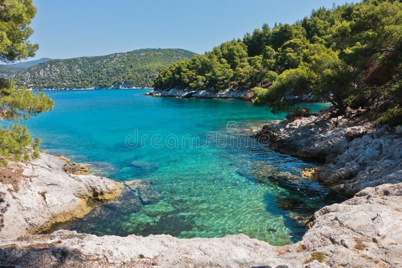 Den lilla lagun med sörjer träd och vaggar över kristallklart turkosvatten nära udde Amarandos på den Skopelos ön arkivfoto