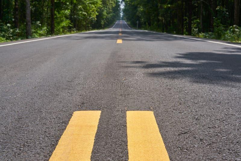Den lilla lantliga asfalterade lutningsvägen royaltyfri foto