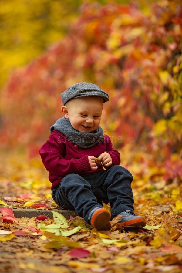 Den lilla le barnpojken sitter parkerar in, och håll gulnar bladet i H royaltyfria bilder