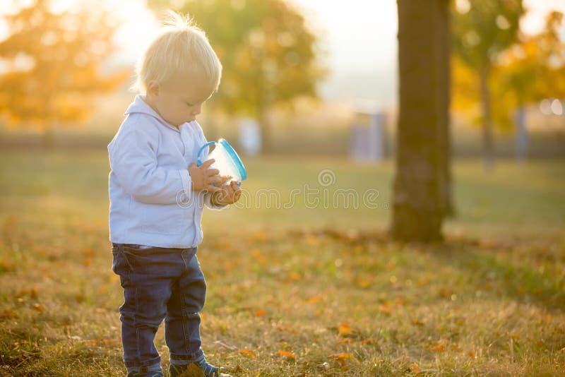 Den lilla litet barnpojken, äter torra frukter från en smart mellanmålask med s arkivfoton