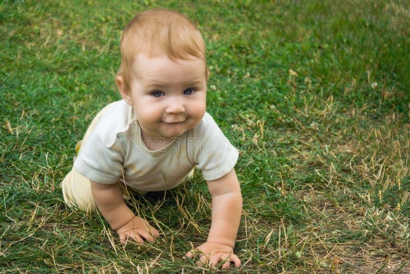 Den lilla litet barnpojken utbildar hans krypande expertis Barnet kryper lyckligt på det gröna gräset arkivbilder