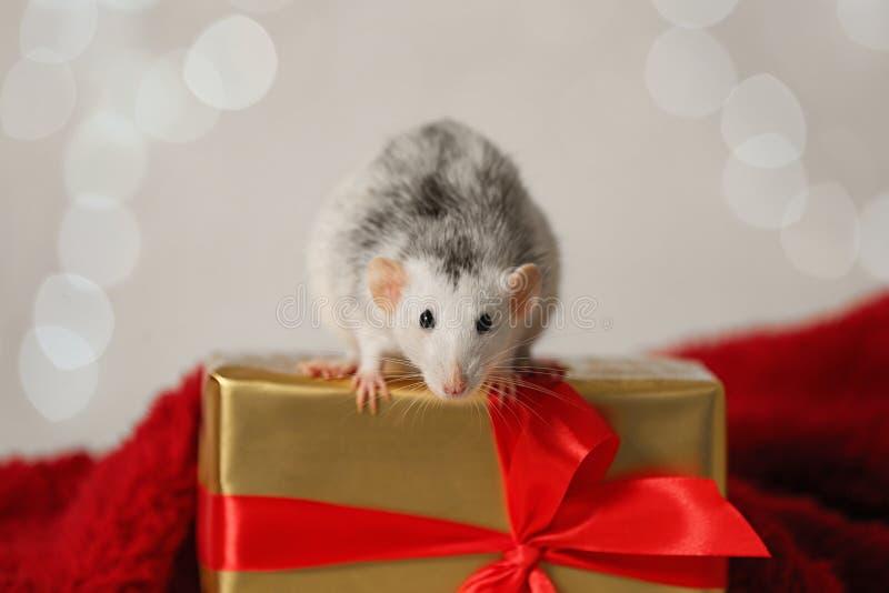 Den lilla råtta- och presentlådan på röd fluffy mot ljus Kinesisk symbol för nyår royaltyfri fotografi