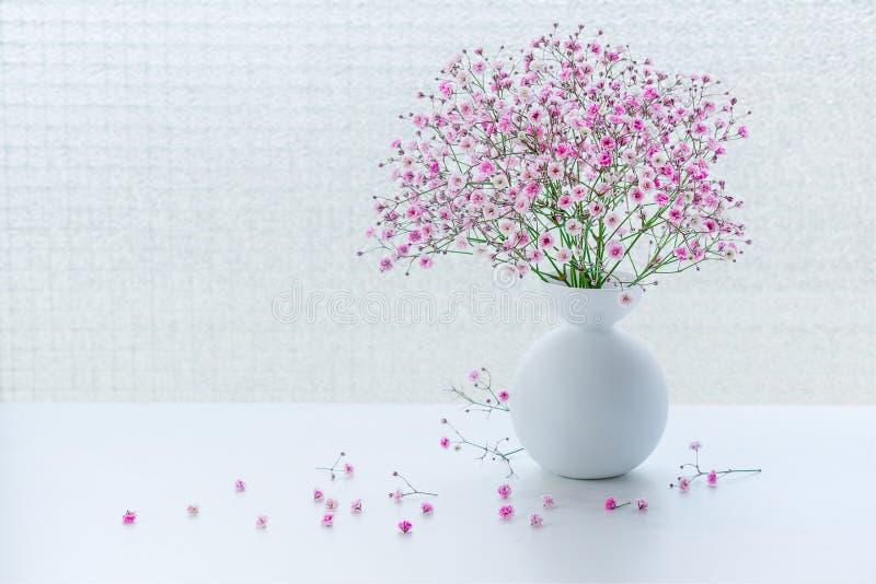Den lilla rosa gypsophilaen blommar på den vita tabellen fotografering för bildbyråer