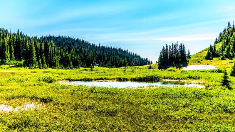 Den lilla sjön i det höga alpint nära byn av solen når en höjdpunkt royaltyfri fotografi