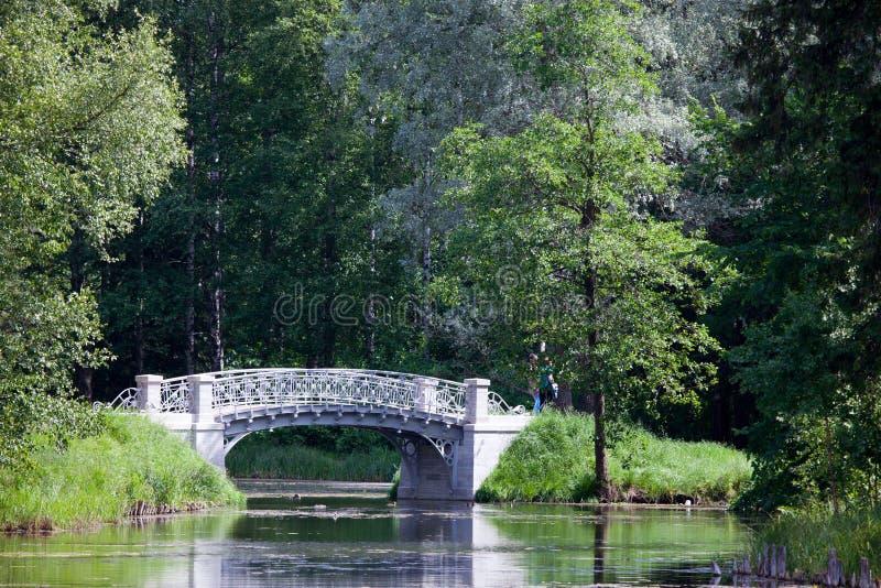 Den lilla sjaskiga bron parkerar in över ett damm Gatchina petersburg Ryssland royaltyfria foton