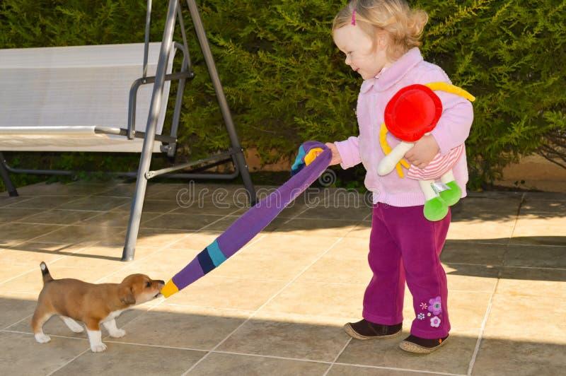 Den lilla valpen spelar med en gullig liten flicka arkivfoto