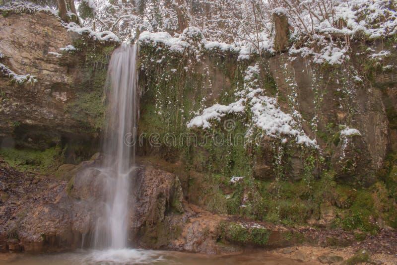 Den Linn vattenfallet i dentäckte skogen i vinter Taget nära Linn, Schweiz, i kanton av Aargau royaltyfri fotografi
