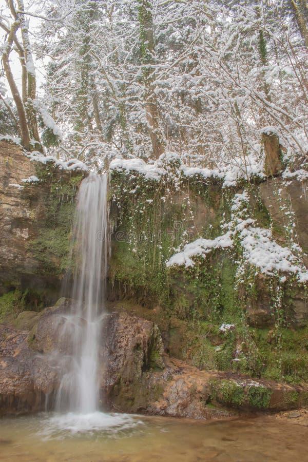 Den Linn vattenfallet i dentäckte skogen i vinter Taget nära Linn, Schweiz, i kanton av Aargau arkivfoton