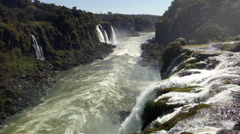 Den livliga floden arkivfoton