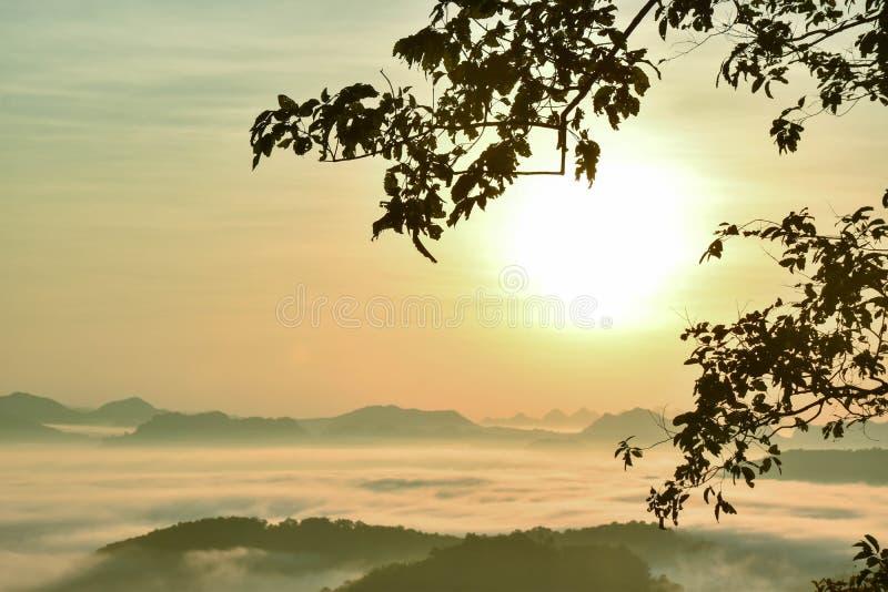 Den ljusa morgonhimlen i komfort med en ljus mist royaltyfri foto