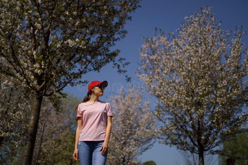 Den lyckade aff?rskvinnan tycker om hennes fritid som fri tid i parkerar med att blomstra sakura k?rsb?rsr?da tr?d som b?r jeans, royaltyfria bilder