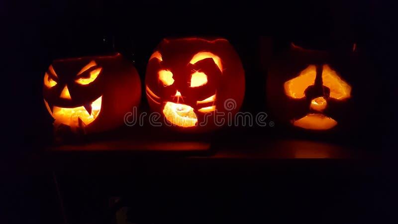 Den lyckliga allhelgonaaftonen, en familj av pumpor sitter i en kököverkant som glöder i mörkret arkivbild