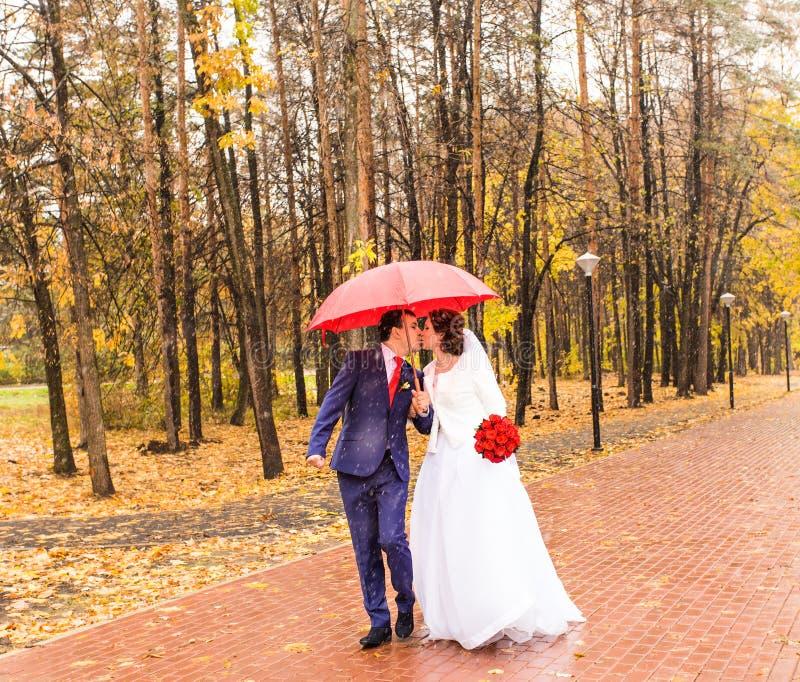 Den lyckliga bruden och brudgummen på bröllop går med det röda paraplyet Höststilbegrepp fotografering för bildbyråer