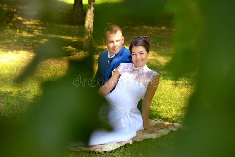 Den lyckliga bruden och brudgummen på deras bröllop sitter på gräset parkerar in arkivbilder