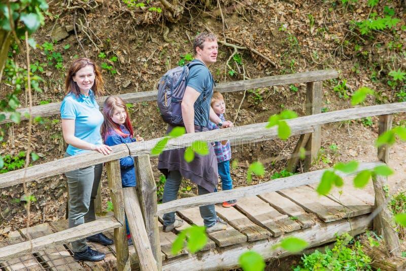 Den lyckliga familjen går på träbron i mitt av skogen arkivbilder