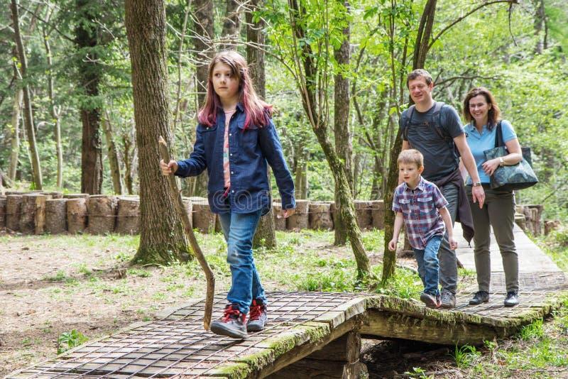 Den lyckliga familjen gör att fotvandra i skogen arkivbilder