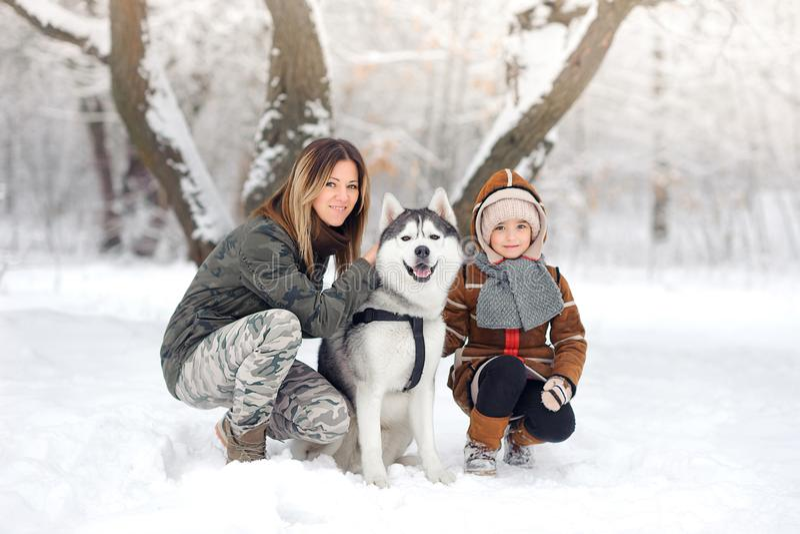 Den lyckliga familjen i vintern parkerar spelar om Huskies royaltyfri foto