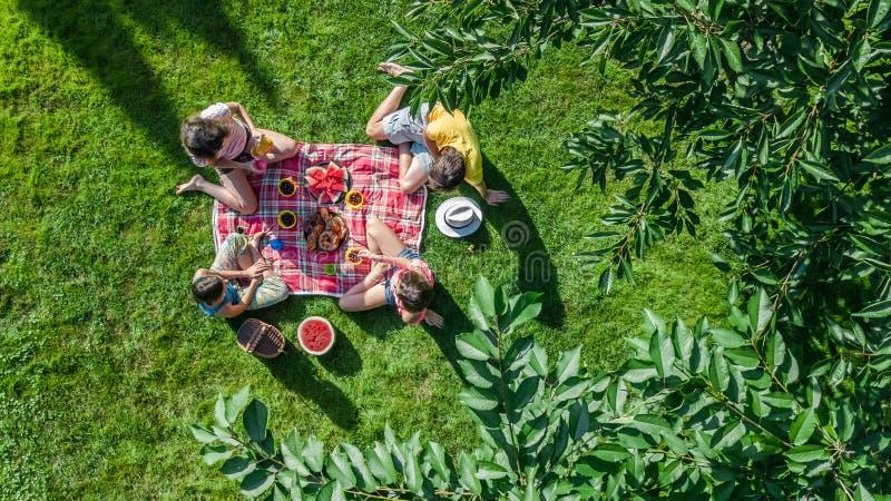 Den lyckliga familjen med barn som har picknicken parkerar in, föräldrar med ungar som sitter på trädgårds- gräs och utomhus äter royaltyfria bilder