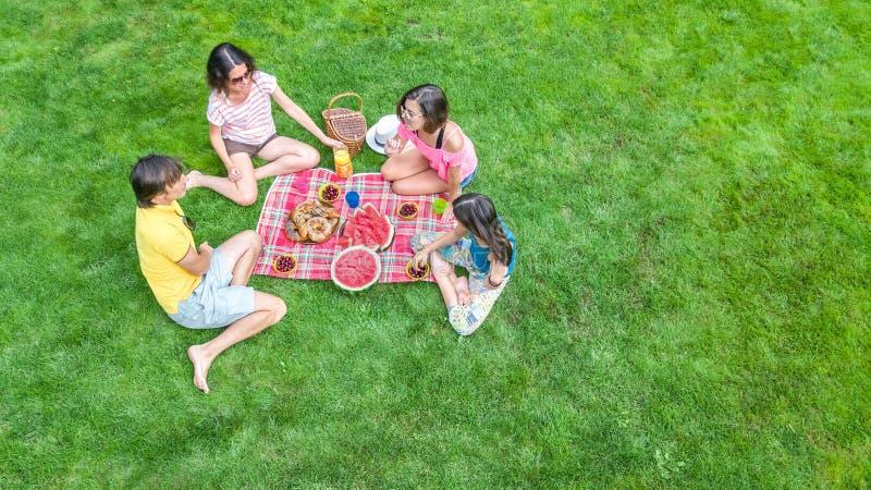 Den lyckliga familjen som har picknicken parkerar in, föräldrar med ungar som sitter på gräs och utomhus äter sunda mål royaltyfri fotografi
