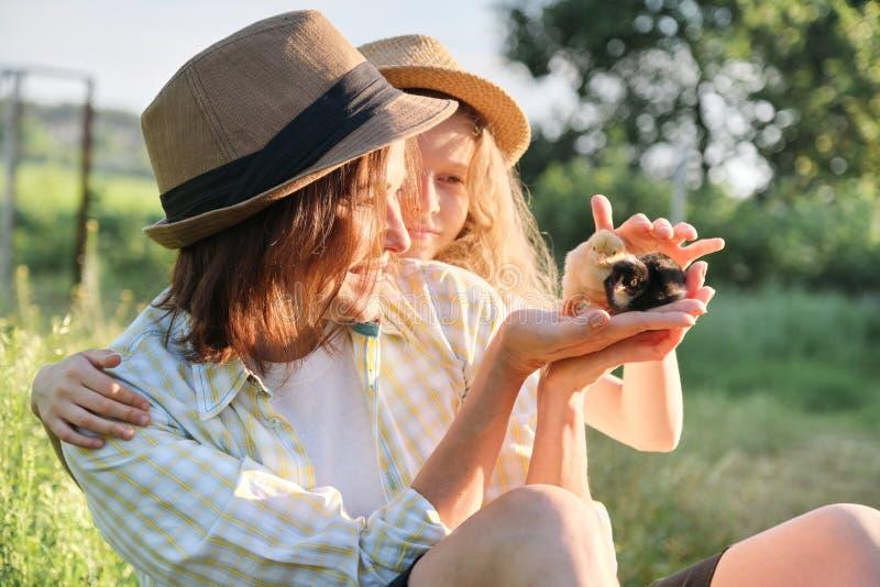 Den lyckliga familjmodern med dottern i natur, kvinnan som rymmer litet nyfött, behandla som ett barn fågelungar i händer, lantgå royaltyfri fotografi