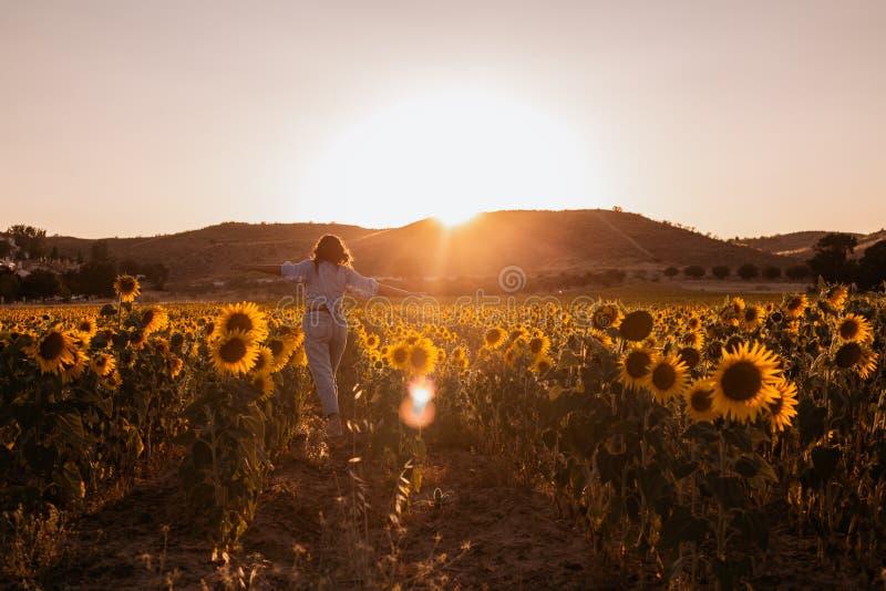 Den lyckliga h?rliga unga kvinnan med armar ?ppnade fr?n hennes baksida i ett solrosf?lt p? solnedg?ngen royaltyfri bild