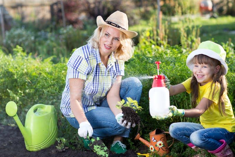 Den lyckliga kvinna- och ungeflickan på lantgård arbeta i trädgården i sommar royaltyfri foto