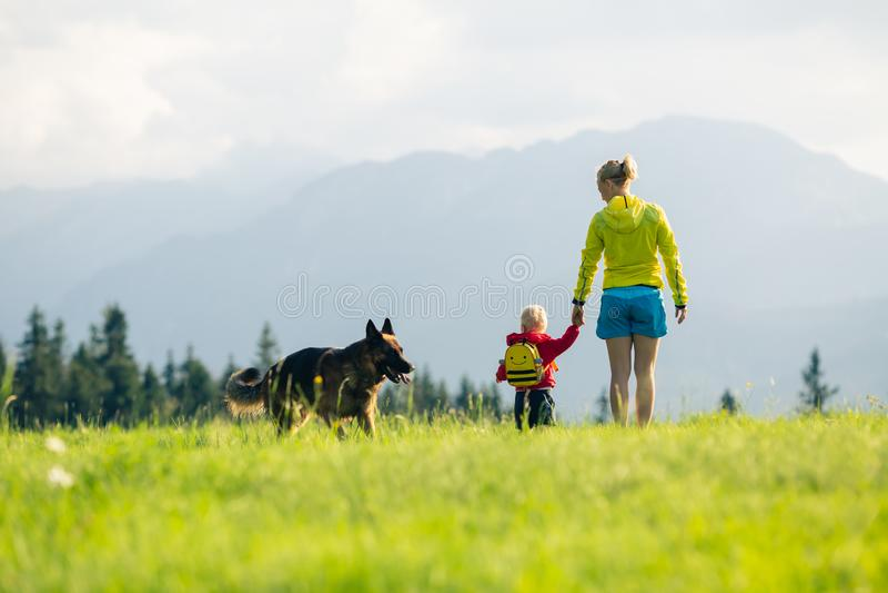 Den lyckliga modern med behandla som ett barn pojken som går en hund royaltyfria bilder