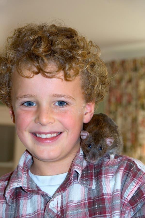 den lyckliga pojken hans husdjur tjaller royaltyfria bilder