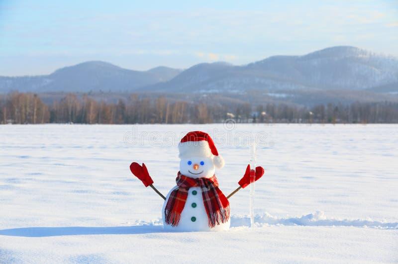 Den lyckliga snögubben med ispikskaften står på snögräsmattan Fält i snö Berg på bakgrunden övervintrar trees för snow för sky fö royaltyfria foton