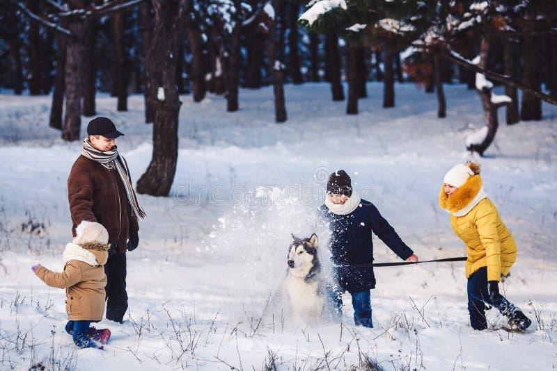 Den lyckliga unga caucasian familjen spelar med en hund i vinter i en pinjeskog royaltyfri fotografi