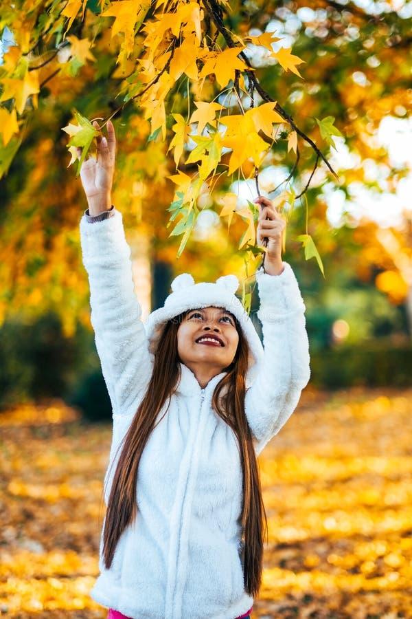 Den lyckliga unga härliga kvinnan i höst parkerar på plockningsidor för den soliga dagen från trädet, ung kvinna i det vita laget arkivbilder