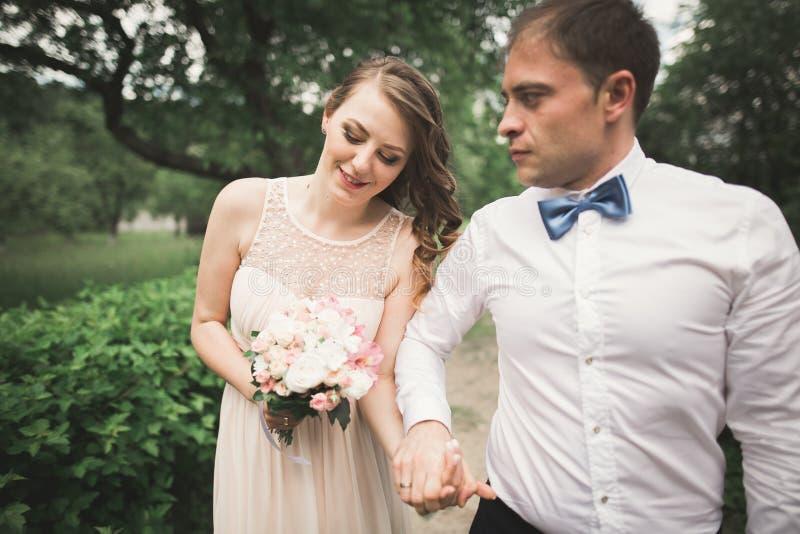 Download Den Lyx Att Gifta Sig Den Brölloppar, Bruden Och Brudgummen Som In Poserar, Parkerar Arkivfoto - Bild av natur, glädje: 78726752