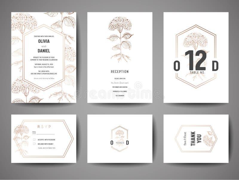 Den lyxiga bröllopräddningen datumet, inbjudan Cards samlingen med blommor för guld- folie och mallen för monogramlogodesign vektor illustrationer