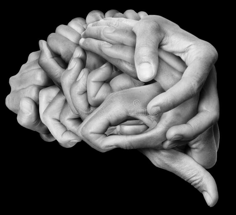 Den mänskliga hjärnan gjorde ‹för †med händer royaltyfria foton
