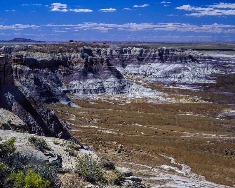 Den målade öknen i Arizona arkivbild