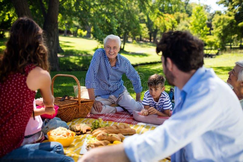 Den mång- utvecklingsfamiljen som tycker om picknicken parkerar in royaltyfri bild
